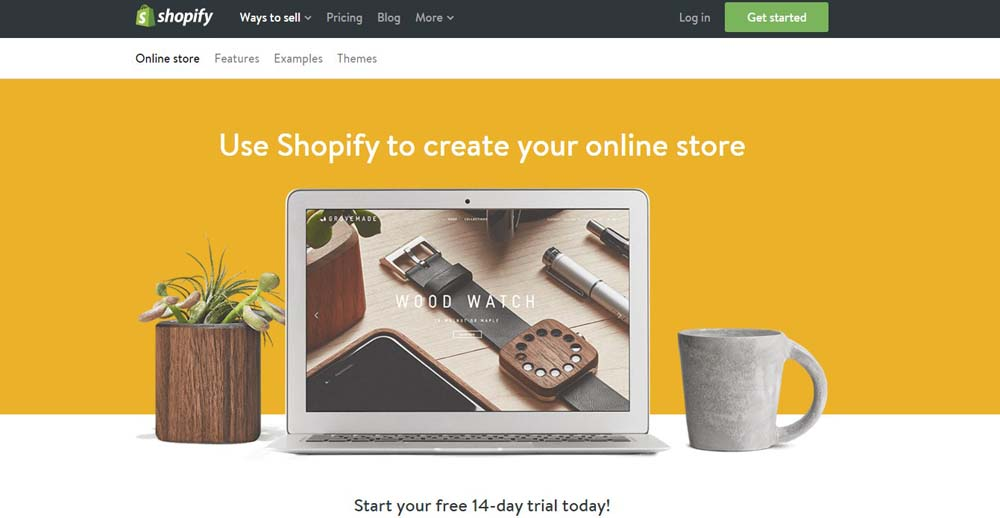 Shopify Hosted E-commerce Platform